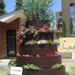 水処理実験装置「ロハスの花壇」