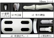 kikai_biomaterial2012