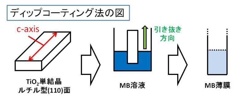 2016第35回固体・表面光化学討論会優秀講演賞image003